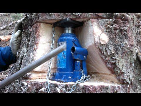 Holzeinschlag (Baumfällung)  mit  hidraulischer heber und Husqvarna 560 xp