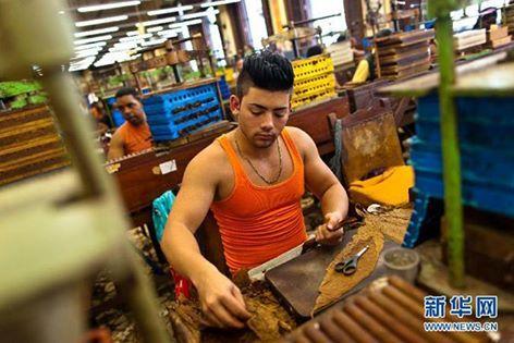 osCurve   Contactos : Los cigarros cubanos son populares en todo el mund...