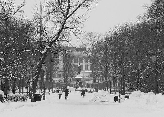 Snowy Esplanade