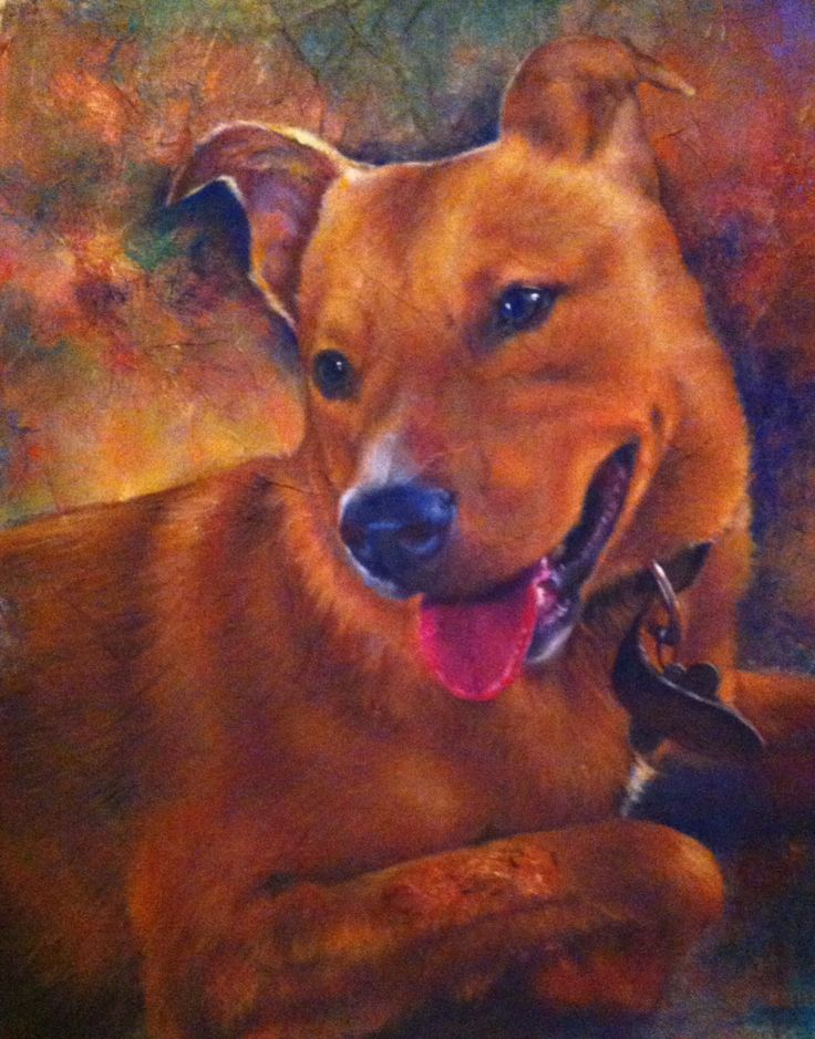 Callie was a portrait painted for my son of his dog as a Christmas gift.