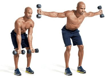 Dumbbell traps workout redditfitness.com