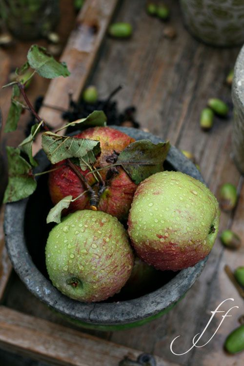 Thy bounty shines in autumn unconfined, and spreads a common feast for all that live.    ~James Thomson
