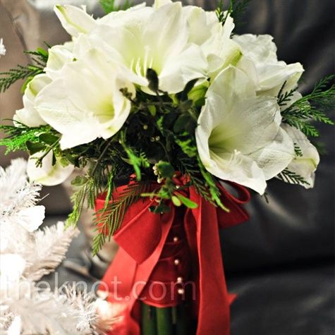 A red velvet ribbon secured the bride's loose bouquet of snow white amaryllis, mistletoe, and fresh cedar: