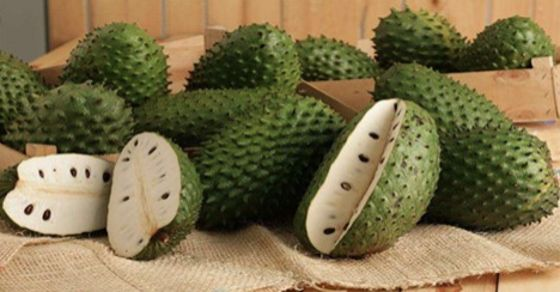Viral Alternative News: Scientists Agree: This Fruit Can Be More Powerful Than Any Medicine Against Cancer!