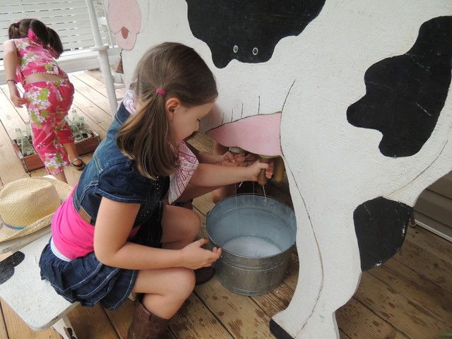 What a crazy funny activity for a cowgirl party! #cowgirl #birthday #activity