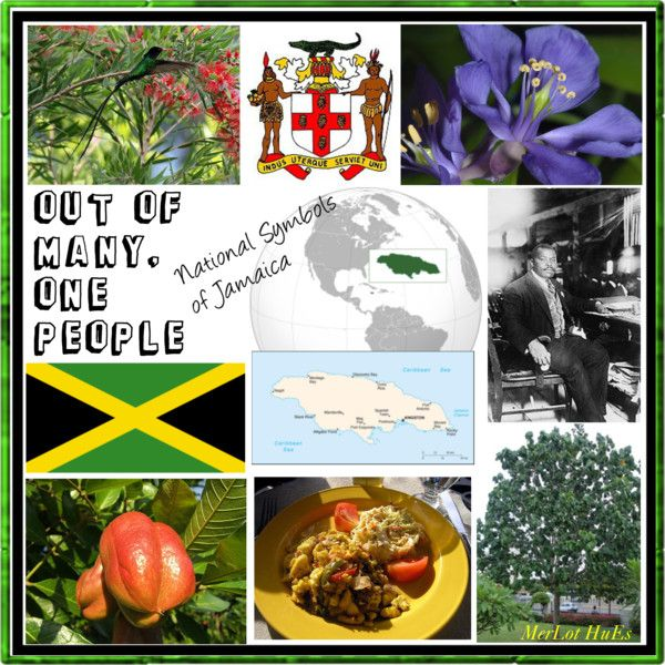"National Symbols of Jamaica features clockwise from top left: National Bird — Red-billed Streamertail  Jamaica's Coat of Arms National Flower – Lignum vitae  National Hero - Marcus Garvey (1887-1940) National Tree — Blue Mahoe  Jamaican meal of Ackee and Saltfish National Fruit — Ackee  Flag of Jamaica National Motto — ""Out of Many, One People."" Map of Jamaica"