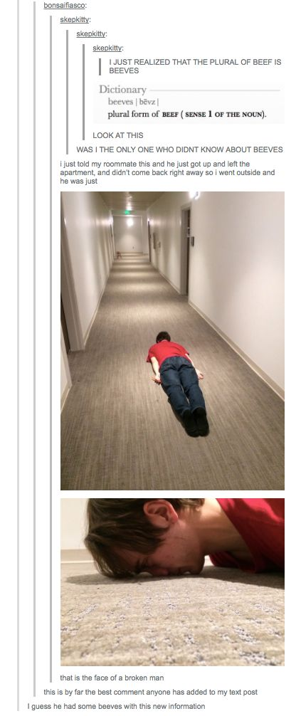 The fucking best!   26 Tumblr Posts That Are Never Not Funny