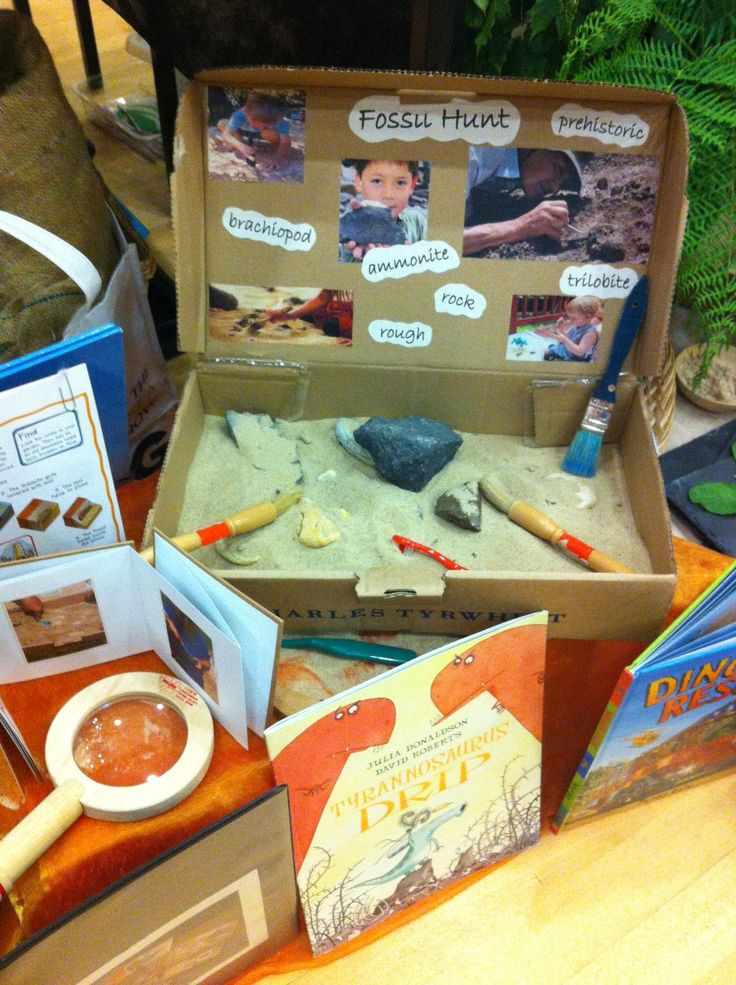 Build a fossil hunt where children can dig in the sand and find different fossils. Why not include some dinosaur bones too?