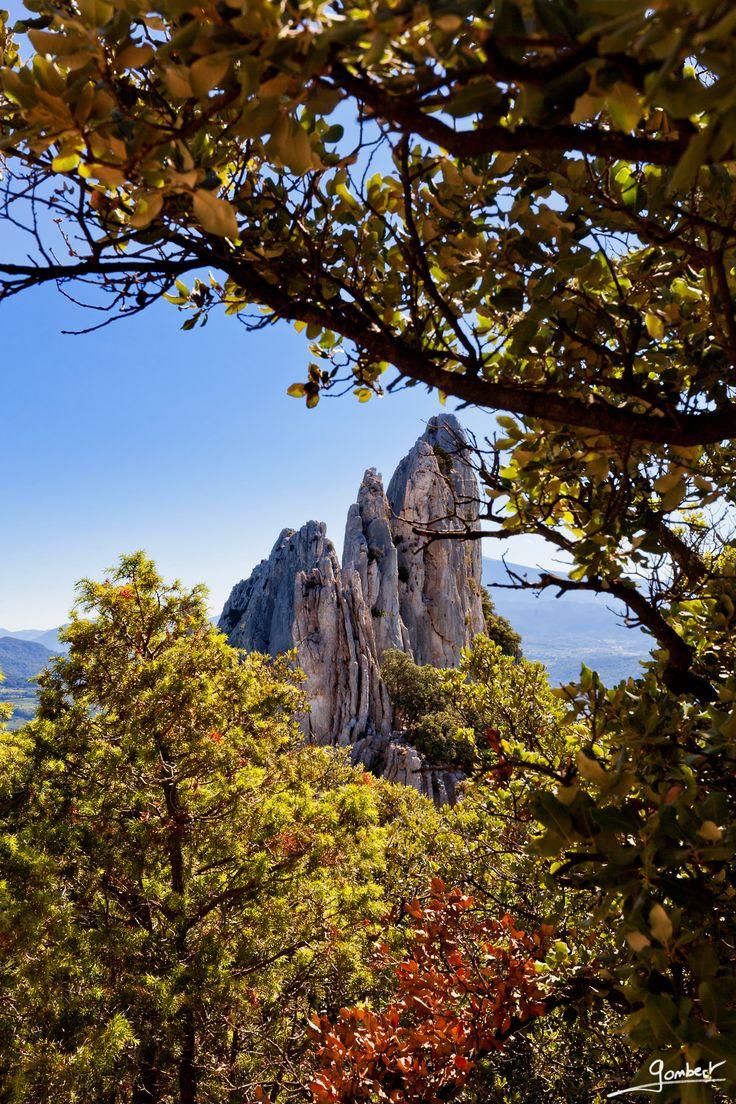 Les Dentelles de Montmirail en Automne - Vaucluse - France: le paradis des amoureux de la nature et des sports de plein air ( randonnée, VTT, escalade...) en Provence.