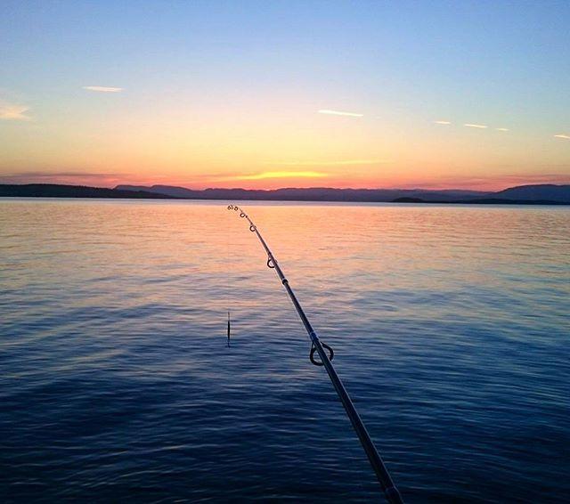 Best way to end a day 😊✨🎣 #sundown #solnedgang #sonnenuntergang #summer #summerday #oslofjorden #bunnefjorden #visitnorway #visitoslo #abugarcia #berkleytwilight #berkley #fishing #fiske #fisketur #angeln #gonefishing #sommerdag #sommertag #sjø #hav #meer #ocean #sea