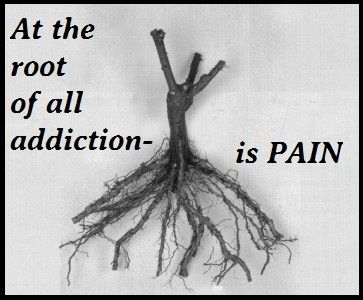 http://center-for-addiction-recovery.com/    This is the real truth -  we don't have a drug or an addiction problem - we have a pain problem.  Every day in modern life our flight or fight system gets triggered time and time again.  There may not be a lion out there ready to attack maybe just a clap of thunder, but your system doesn't know that and you're still shell-shocked and stressed out.  Learning how to handle the stress is half the battle.