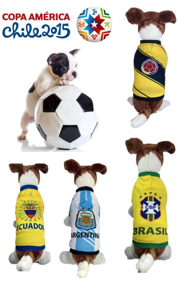 Amazing dog soccer jerseys!  Let your dog share a team spirit with you in Copa America 2015