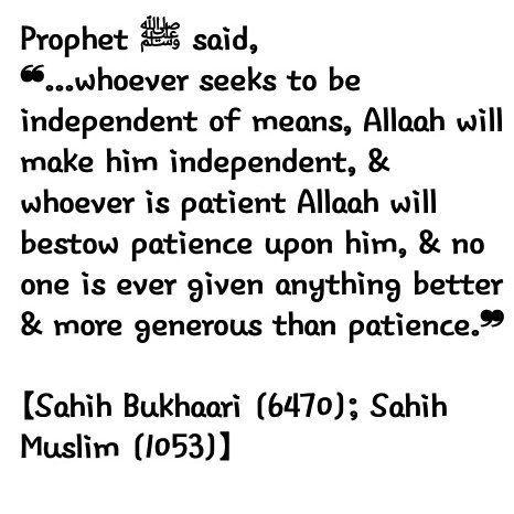 living the sunnah