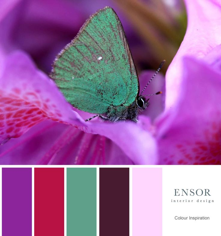 Pinks and Teals. #bold #colour #design #ensor www.ensorinteriordesign.co.uk