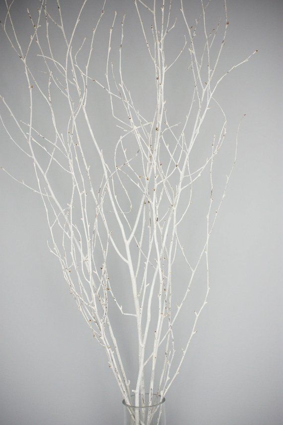 White Painted Branches Curly Twigs