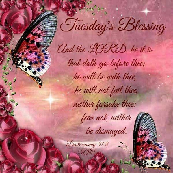Tuesday's Blessing good morning tuesday tuesday quotes happy tuesday tuesday blessings tuesday pictures tuesday images good morning tuesday blessed tuesday