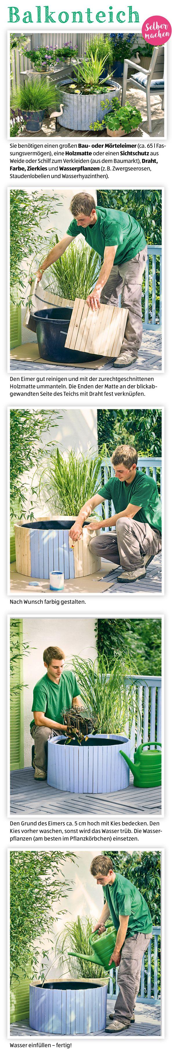 Best Gemusegarten Anlegen Pflanzplan Contemporary - Home Design ...