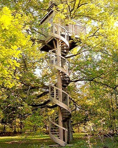 23 AMAZING Tree Houses! | SMOSH