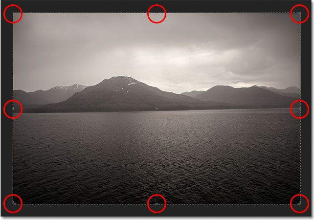 Photoshop CS6 automatically places a crop box and handles around the image. Image © 2012 Photoshop Essentials.com