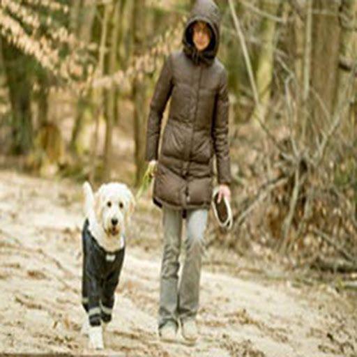 Dog pants patterns | Free Dog Clothes Patterns