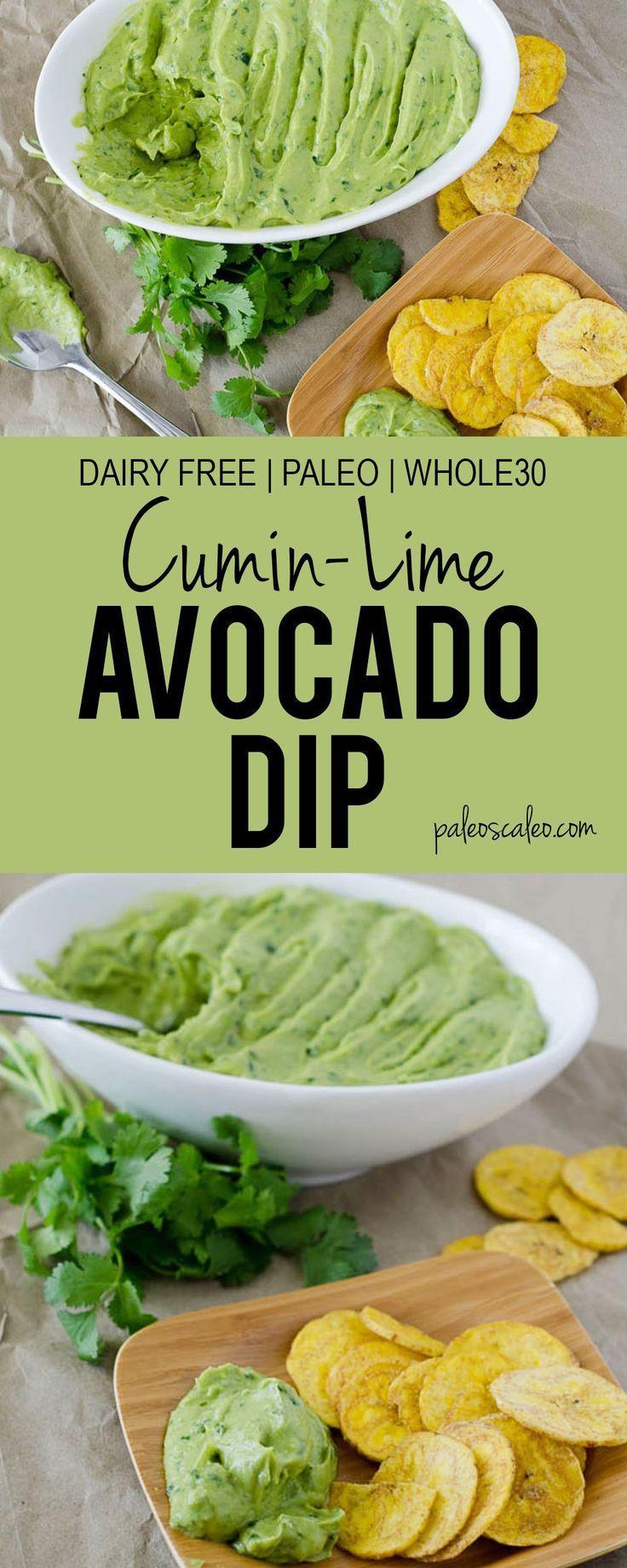 Cumin-Lime Avocado Dip   PaleoScaleo.com