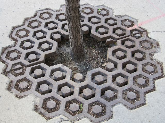 So often we forget that common items can be any shape that is functional..even an interesting one. Here, bee hive tree grates add fun to a sidewalk.