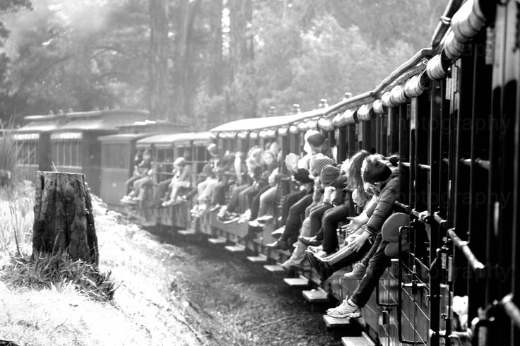 Puffing Billy Train Ride : This century-old steam train continues to run on its original mountain track from Belgrave to Gembrook in the magnificent Dandenong Ranges 40kms east of Melbourne.