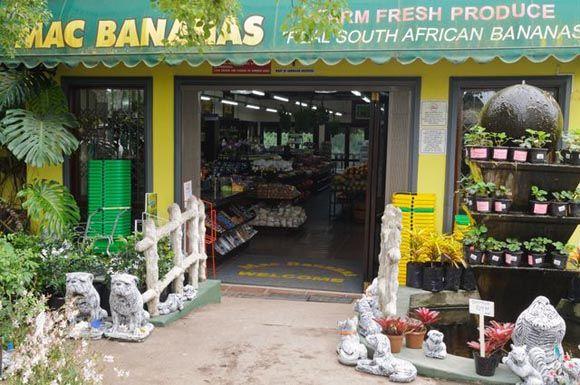 MacBananas South Coast, KZN