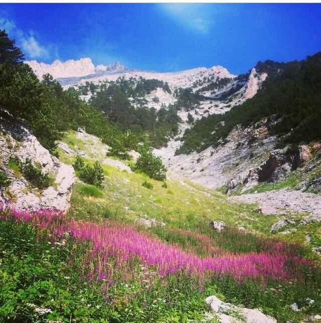 Olympus Mountain, Pieria, #visit_pieria