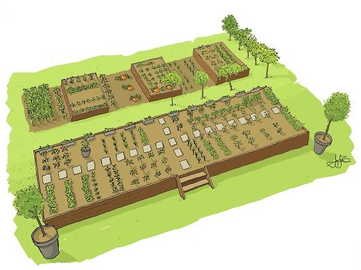 What is the optimum size for a family vegetable garden?