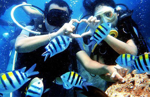 Rasakan sensasi liburan yang berbeda di Bali dengan aktifitas diving di Nusa Dua mulai dari harga Rp 300.000,-/pax #panoramagroup