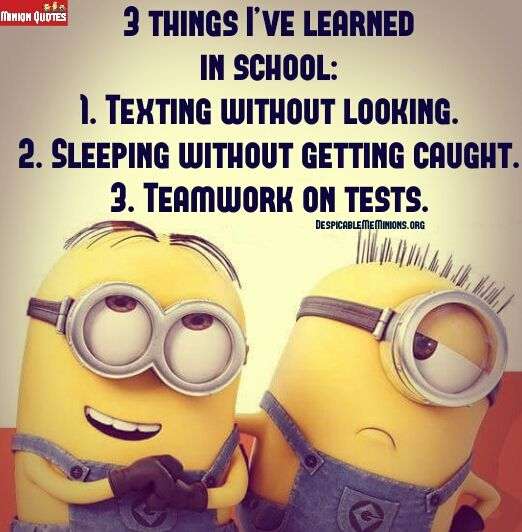Funny Minion Quotes About School: 79 Best Images About Funny Stuff On Pinterest