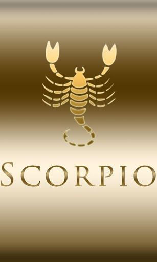 scorpio and virgo match making Virgo men compatibility with scorpio women and scorpio men compatibility with virgo women - astrology sees that there are a lot of chances for the scorpio woman and virgo man to find a happy marriage by nature, the virgos are highly intelligent they are very sharp and good in understanding.