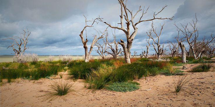 Copyright, 2016. Natalie Uscinas. Lake Menindee, NSW, Australia.