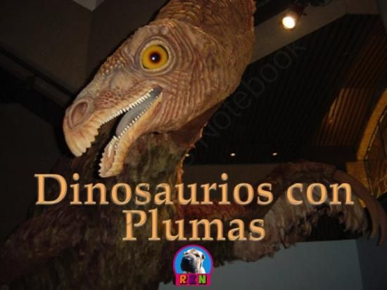 Dinosaurios: Los Dinosaurios con Plumas from Ryan Nygren: RKN Ryan's Knowledge Network on TeachersNotebook.com -  (22 pages)  - Los Dinosaurios con Plumas  �ES POSIBLE QUE LAS AVES SEAN LOS �NICOS ANIMALES EN HABER TENIDO PLUMAS?  �SER�A POSIBLE QUE LOS DINOSAURIOS HAYAN ESTADO CUBIERTOS DE PLUMAS?  SI ES AS�, �PORQU� TENDR�AN PLUMAS LOS DINOSAURIOS? �HUBO UNA FAMILIA DE DINOSAURI