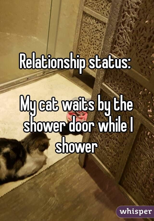 Relationship status:   My cat waits by the shower door while I shower