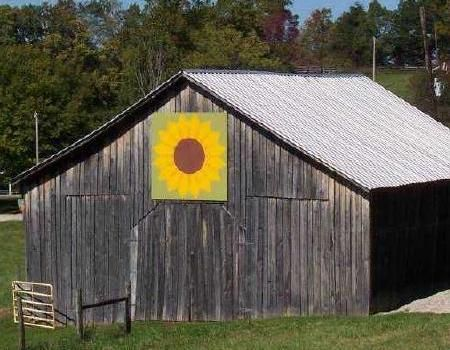 I recently saw black barns in Kentucky with Quilt blocks on them. I'm in awe!!! What a FABULOUS idea!!!
