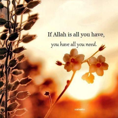 allah is all knowing