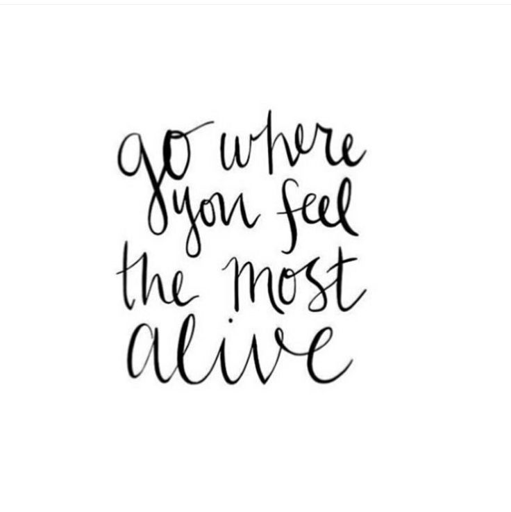 Go where you feel the most alive | Inspiring Quotes | Words of Wisdom | Happiness Quote | Follow Your Dreams | Motivational Quote | Life Quotes
