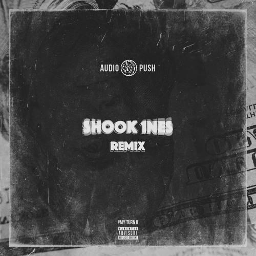 Audio Push – Shook1nes (Remix)