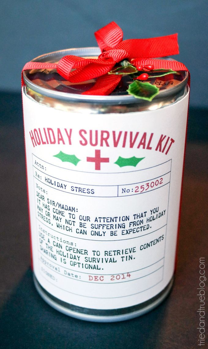 Holiday Survival Kit Easy Gift - such a cute way to gift homemade cookies!!  LOVE the free printable!