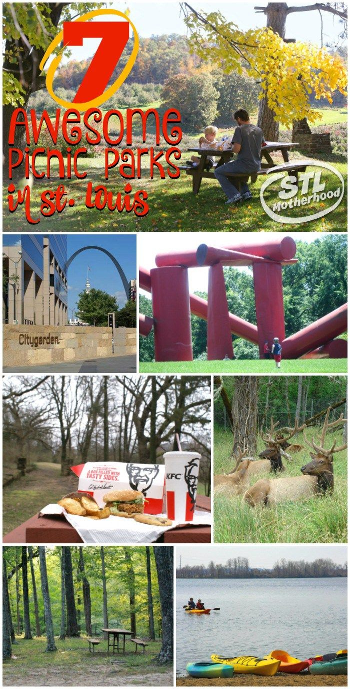 7 awesome picnic parks in St. Louis your kids are gonna love. There's nothing better than a spontaneous picnic, so grab some chicken and head to one of these great parks!