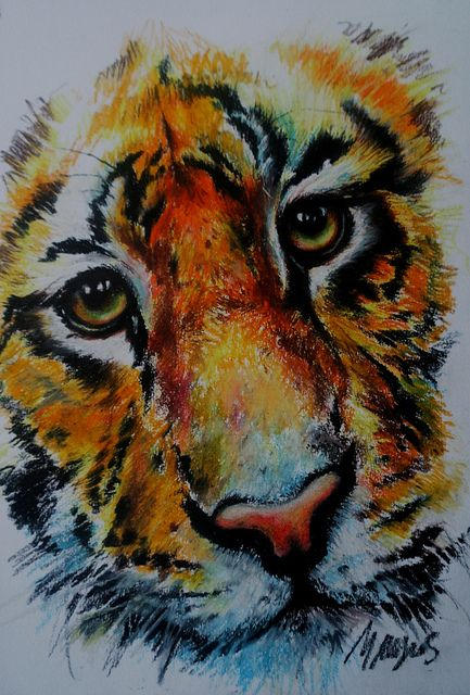 oil pastels | Tiger - oil pastel study | Flickr   This is really nice, oil pastels are a relatively new medium for me