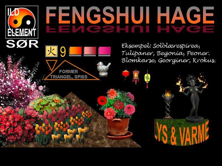 Feng Shui med vekstvalg 4