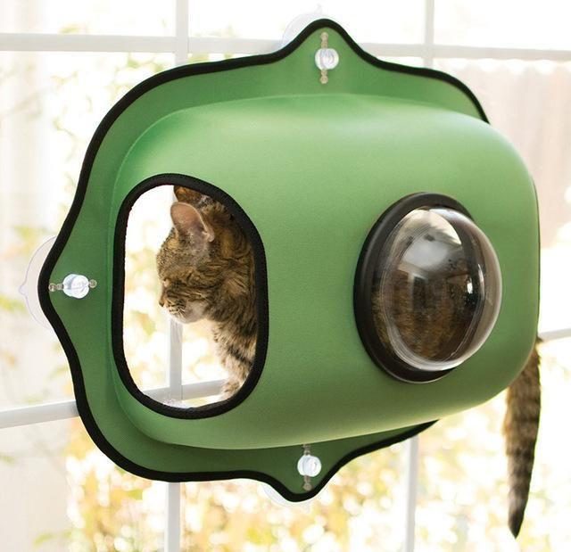 9 besten Pet Care Bilder auf Pinterest | Haustierpflege, Hundejacke ...