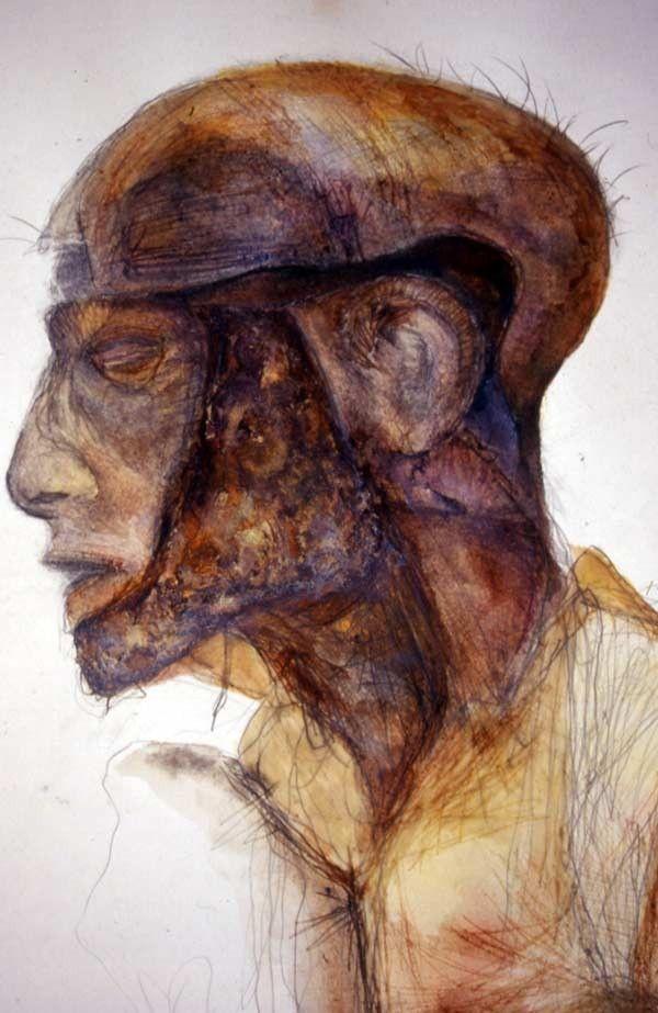 37 besten Anatomical drawings Bilder auf Pinterest | Menschliche ...