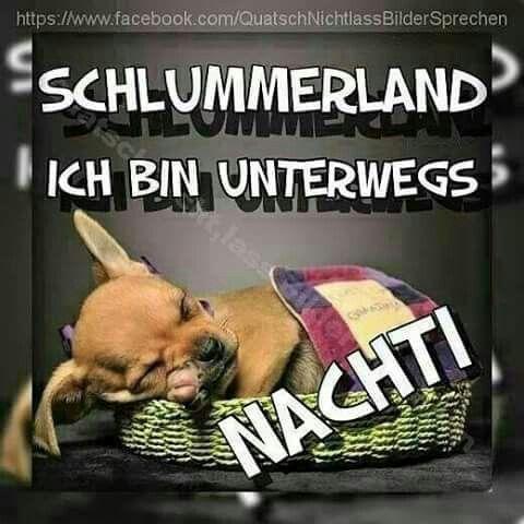 Gute Nacht - http://guten-abend-bilder.de/gute-nacht-5/