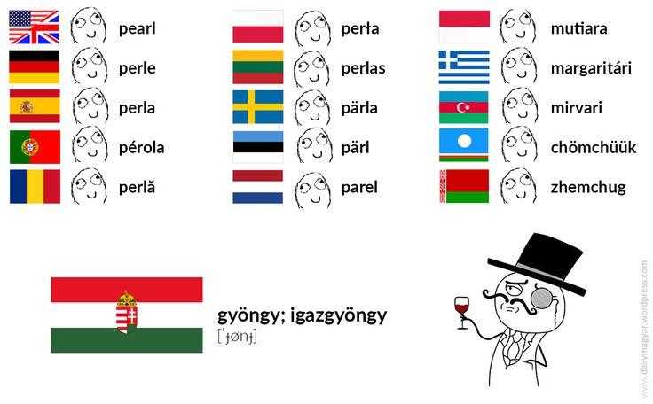 gyöngy [ˈɟønɟ] – pearl igazgyöngy [ˈigɑzɟønɟ] – pearl igaz [ˈigɑz] – true; real #Hungarian #language #meme #magyar