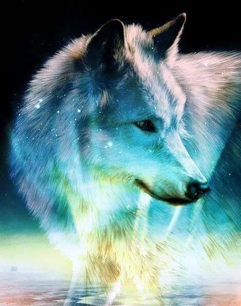Galaxy wolf: Wolves N Indians Eagles, Art Earth, Spirit Animal, Wolves Art