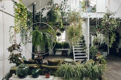 Clapton Tram in Londen: vol met planten